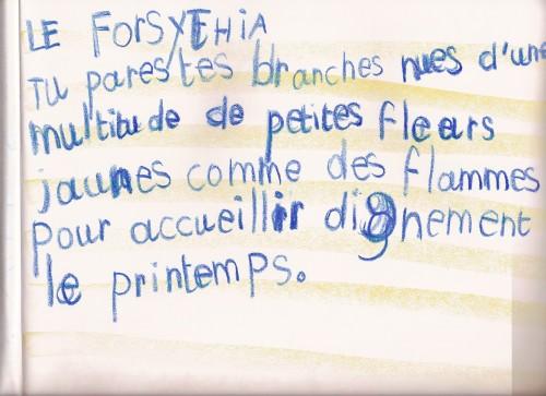Botanique3èmeclasse-5